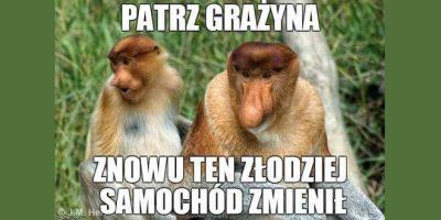Grażyna i Janusz ekonomii